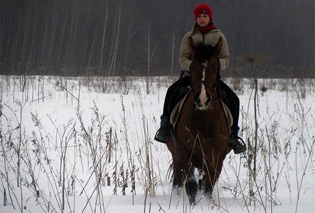 Главное для лошади— это постоянное движение, и глубокий снег этому не помеха