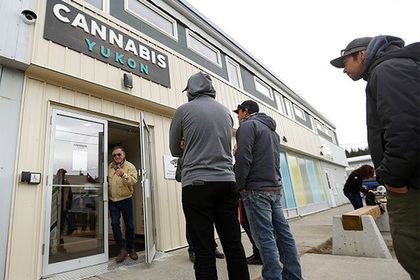 В Канаде сравнили потребление марихуаны до и после легализации