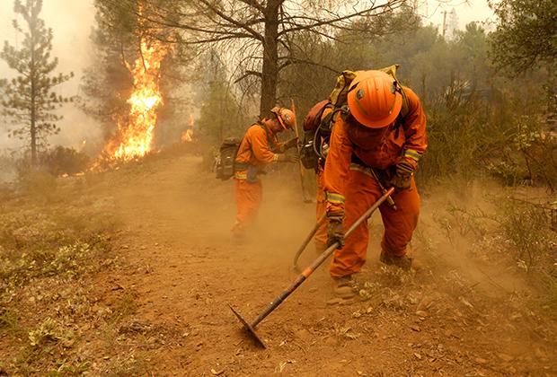 На этом фото заключенные создают противопожарное заграждение, но известно, что их привлекали и к непосредственному тушению пламени.