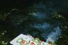 Во время летнего солнцестояния юные ведьмы опускают в реку заговоренные венки со свечами. Если венок поплывет хорошо, то девушка скоро выйдет замуж, если остается на месте — значит, время еще не пришло. Утонувший венок — очень плохой знак: либо цыганке сидеть в старых девах, либо и вовсе готовиться к похоронам.