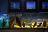 Память о былых уловах осталась в краеведческом музее Аральска. Около аквариумов школьникам рассказывают об их прадедах-рыбаках и о «бездонной рыбной бочке», которой было ушедшее море.