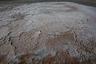Сухое дно Арала покрыто солью, пестицидами и ядохимикатами. Пылевые бури разносят эту смесь на сотни километров, отравляя землю и людей. Ученые находят следы аральской соли в Скандинавии, Антарктиде, Норвегии, Белоруссии… Земля на Арале такая соленая, что на ней ничего не растет. Люди не сажают огороды, повсюду белеют солончаки. Сверху — корка из соли, а под ней — топкий ил, ступишь — провалишься, «пойдешь — не вернешься».