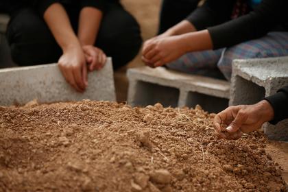 Массовое захоронение обезглавленных людей нашли в Сирии