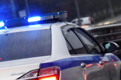 Пенсионерку с оружием задержали в Москве