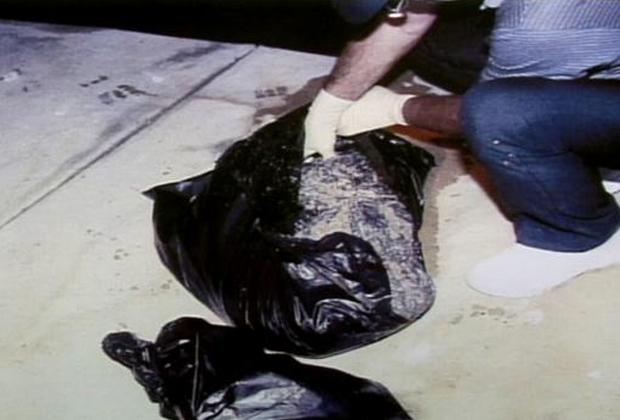 Найденные у берега пакеты с останками Морриса Блэка