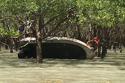 Рыболовы два дня прятались на ветке с огнетушителем от огромного крокодила