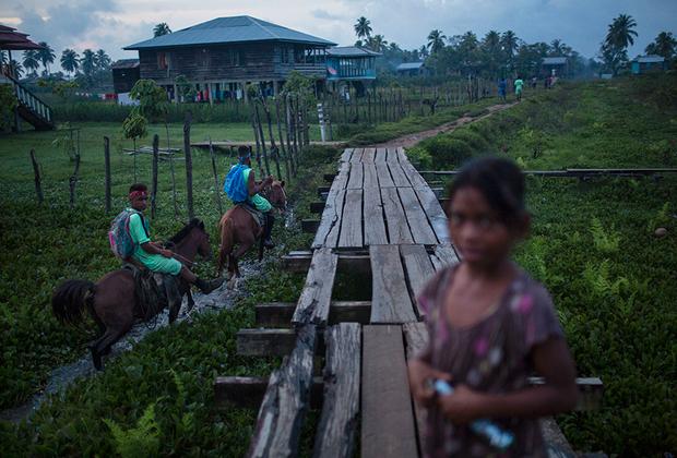 На берегу ныряльщики ведут традиционный образ жизни. Они живут в собственноручно построенных домах из дерева, не пользуются технологиями и передвигаются на лошадях— в затерянной в мангровых джунглях Ла-Москитии практически нет дорог.