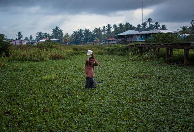 Во многих деревнях Ла-Москитии нет ни электричества, ни водопровода. Смывать с себя соленую воду ныряльщики предпочитают в мангровых болотах.