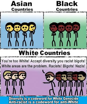 Описание этнического состава разных стран с точки зрения подписчиков The_Donald