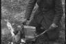 1941 год. Сокольники — Львов, Украина (точно не установлено).