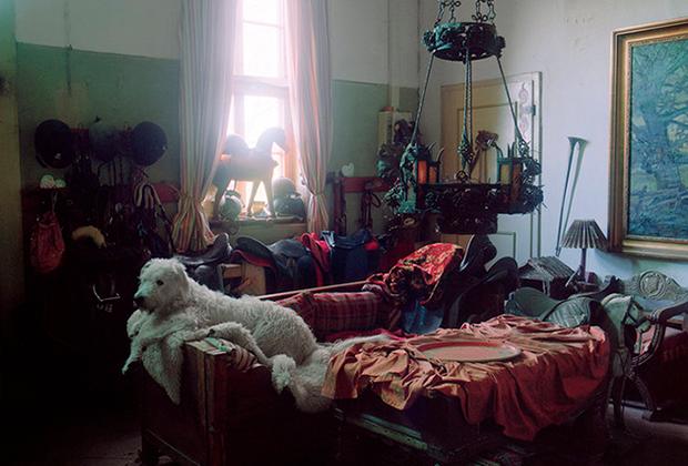 Весь дом с большим вкусом обставлен уникальными вещами. У каждого предмета мебели или картины на стене своя история, достойная отдельного рассказа, отмечает Снежана.
