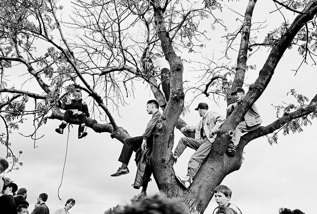 Фавьер потратил на «Белфаст» почти 40 лет — и сколь давней и далекой ни казалась смута в Северной Ирландии, фотограф продолжал замечать ее и в 1990-х, и 2000-х, и 2010-х годах — в архитектуре, разделявшей столицу региона между протестантами и католиками, в граффити, чествовавших мертвых героев, и в бывших участниках конфликта, который навсегда оставил отпечаток в их жизни.