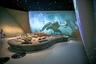 В разделе, посвященном доисторическим животным, мультимедийные экраны позволяют зрителям представить, как выглядели динозавры, от которых остались только ископаемые скелеты.