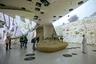 В новом музее гостям рассказывают обо всех сокровищах Катара — от природных до культурных. Поэтому традиционные экспонаты — например, чучела аравийских ориксов, длиннорогих антилоп, своеобразных символов страны — соседствуют с громадными мультимедийными экранами, создающими эффект присутствия. Он усиливается тем, что внутренние стены музея, как и наружные, — цвета пустынного песка и камней.