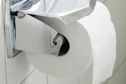 В российскую поликлинику перед визитом Медведева завезли туалетную бумагу