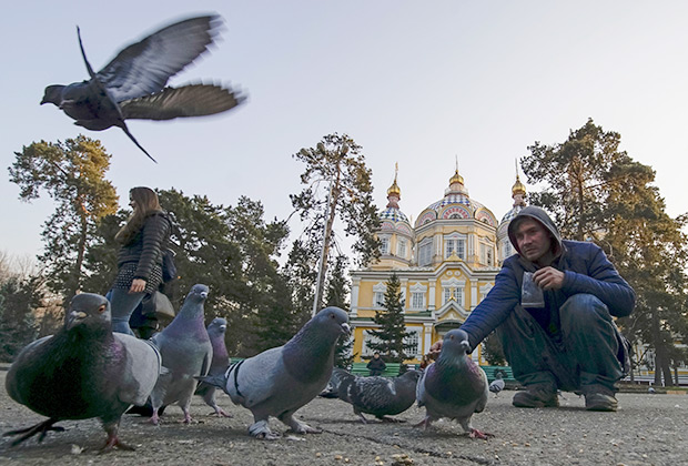 Горожане кормят голубей в парке Алма-Аты