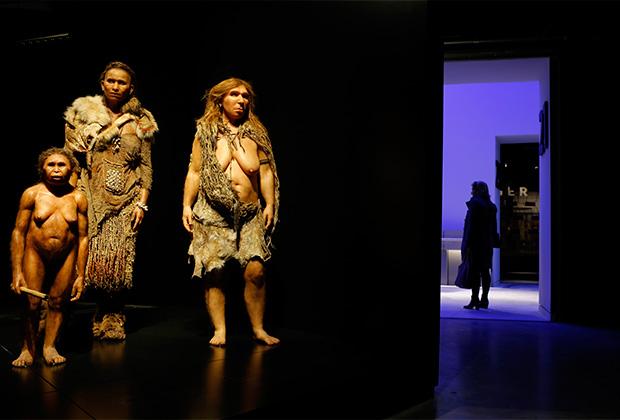 Реконструкция внешнего облика неандертальцев