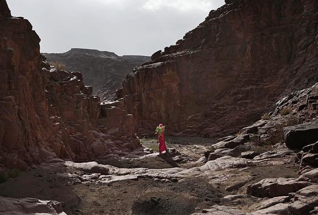 Бедуинская девочка несет растения, собранные в горах, окружающих деревню Вади Саху. Растения, произрастающие в окрестных горах и пустыне, бедуины используют в народной медицине.