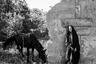 «Гульшат живет в бедной семье в маленькой деревне, она умеет доить коров и косить сено. У нее обморожены пальцы рук, потому что однажды мама оставила ее на снегу».