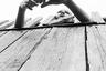 В конце марта в Италии состоялось открытие первой персональной выставки Бикбулатовой. Возможность организации выставки в музее MAGA фотограф получила благодаря премии Риккардо Прина, которую она взяла за «Две параллели» годом ранее.