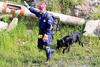 Раскрыты детали спасательных операций в лесах Подмосковья