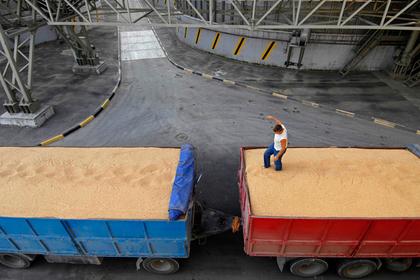 Российская компания решила купить попавший под санкции украинский агрохолдинг