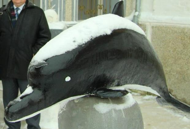 Скульптура черного дельфина во дворе колонии