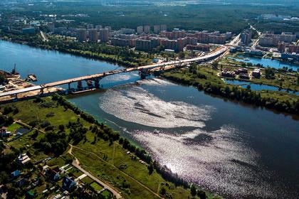 Обмелевшая Волга испугала россиян
