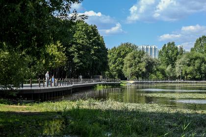 Самым дешевым в России оказалось благоустройство парков