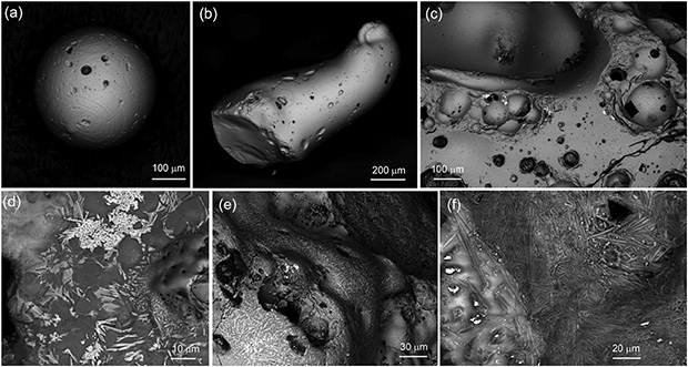 Изображения частиц, полученные сканирующим электронным микроскопом