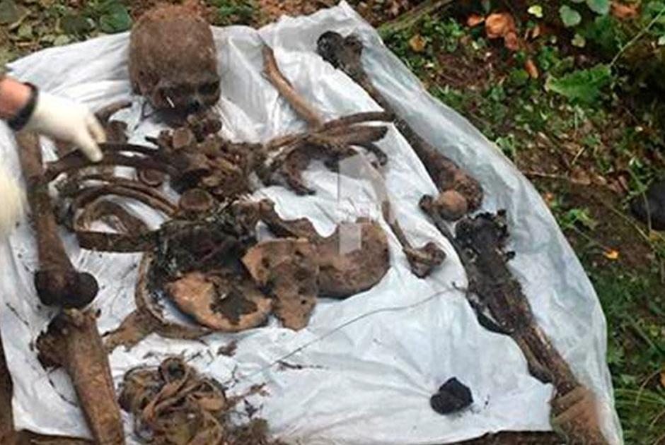 Останки одной из возможных жертв банды Кости Большого, найденных в Подмосковье
