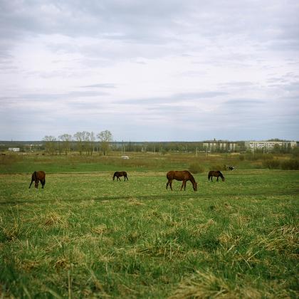 Низино. Конноспортивный клуб «Эфа» для владельцев лошадей. Местность известна с XV века. Сейчас здесь соседствуют полуразрушенные постройки и блочные дома. В настоящее время тут начинается строительство современных жилых комплексов.