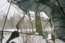 Ораниенбаум, он же Ломоносов. Кладбище «Красная слобода». Так выглядит одно из самых крупных братских захоронений героев Великой Отечественной войны «Малая Пискаревка», которое стало местом упокоения более пяти тысяч защитников и жителей города.