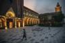 Новый кампус Huawei разделен на блоки, между которыми курсируют автобусы. Желающие могут бродить по территории самостоятельно.