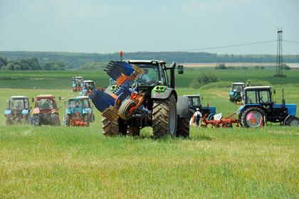 На поддержку подмосковных аграриев выделят более 400 миллионов рублей