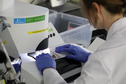 Названа опасность «мусора» в ДНК