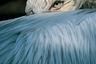 Кудрявый пеликан запечатлен в почти человеческой глубокомысленной позе. Трудно его представить без знаменитого клюва — однако здесь он скрылся за «крылатым плащом».  <br> <br> Фото сделано на рассвете в румынской дельте Дуная: птица еще спит, голова повернута на 180 градусов, а клюв покоится на спине, утопая в перьях. Печально известные своей застенчивостью кудрявые пеликаны легко пугаются, поэтому выбирают для гнездования острова и болотистые местности. Как и многие птицы, пеликаны спят с одним открытым глазом, и только половина их мозга в этот момент урывками отдыхает, регулируя, насколько глубоко можно провалиться в сон. Огромный клюв в жару помогает для охлаждения — с него испаряется лишняя влага, однако холодными ночами его приходится прятать.