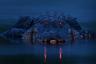 Фотограф запечатлел героя, зная, что он сыт и обездвижен: американский аллигатор объелся рыбой, пойманной в пруду. Так получился портрет ночного охотника с пронзительным взглядом.  <br> <br> То, что глаза аллигатора светятся красным, — результат отражения света от тапетума (особый слой сосудистой оболочки глаза). Каждый аллигатор может найти дорогу в темноте и под водой: это связано с сенсорной адаптацией — он может чувствовать волны давления, вызванные мельчайшими движениями воды. Так же он может и идентифицировать добычу. Несмотря на толстую чешуйчатую броню и ленивый вид, этот хищник на самом деле очень чувствителен.