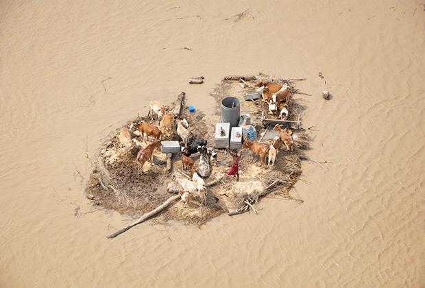 Экваториальные и субтропические области планеты могут подвергнуться интенсивному опустыниванию.
