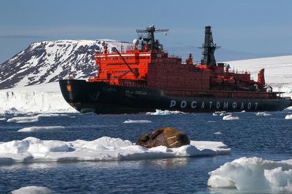 Российские ученые доказали полезность дрейфующих льдин