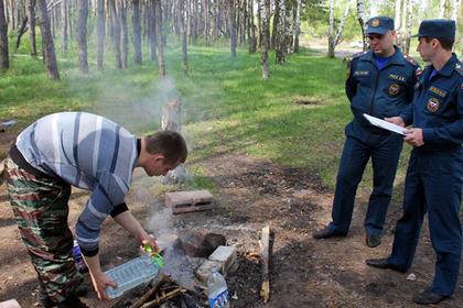 Власти Подмосковья рассказали о профилактике лесных пожаров