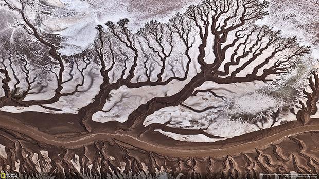 Этот снимок реки Колорадо был сделан с легкомоторного самолета Cessna. На пути к Мексиканскому заливу река почти полностью мелеет, так как большая часть воды уходит на полив сельхозугодий.