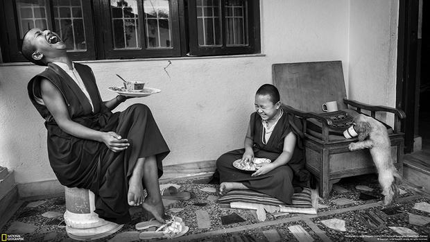 «Было непросто поймать маленьких лам. Они проводят все свое свободное время, гуляя вокруг, играя в футбол или общаясь в социальных сетях», — рассказывает фотограф Хорхе Дельгадо Уренья.