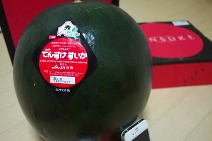 Японец выложил за черный арбуз состояние