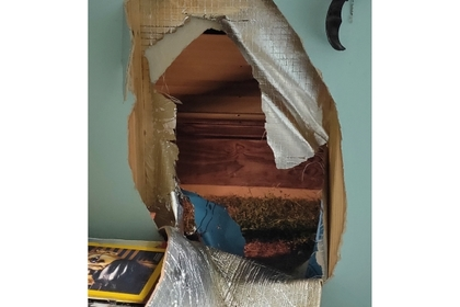 Кенгуру проломил стену дома и изгадил комнату