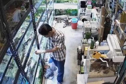 Мужчина пришел в зоомагазин и отравил редких рыбок