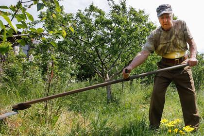 Проект изъятия земель за мусор и нескошенную траву раскритиковали