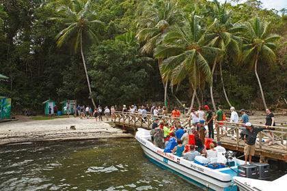 Невеста умерла после медового месяца в Доминикане