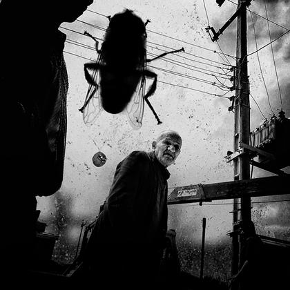 Во время двухлетних скитаний на работу и обратно иранский фотограф Носрат Джафари снимал на камеру своего мобильного телефона стариков. Такое странное увлечение принесло ему победу в Street Photography Awards 2019 в категории «Одиночная фотография». Джафари объясняет, что его интересует влияние времени на человеческое тело. Особенно в социальном смысле, добавляет он.  <br><br> Этот снимок сделан год назад на его iPhone. Смартфон гораздо больше подходит для съемки в общественных местах, поскольку не привлекает такого внимания, как профессиональная аппаратура. По словам фотографа, в повседневной съемке есть какая-то магия. Она сродни охоте. Как на этом снимке: пожилой человек медленно идет, затем останавливается и поворачивается к фотографу, смотрит на него в течение нескольких секунд, кадр сделан — и он уходит, никогда не узнав о том, кто и зачем его запечатлел. «Помни меня» — так называется работа Джафари.