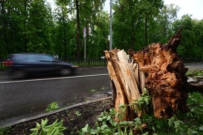 На Тбилиси обрушился ураган